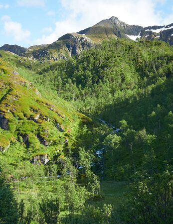 Scenic mountain view in mountainous summer terrain in northern Norway. Senja Island, Troms County - Norway. Beauty of nature concept background.