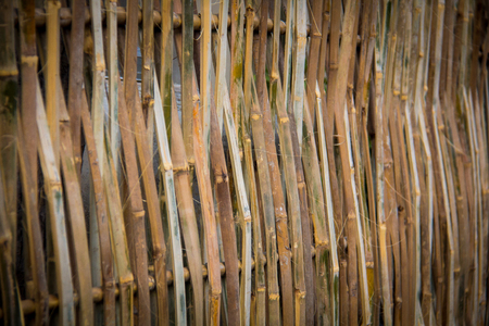 wooden partition: background from old bamboo sticks, wood texture. Stock Photo