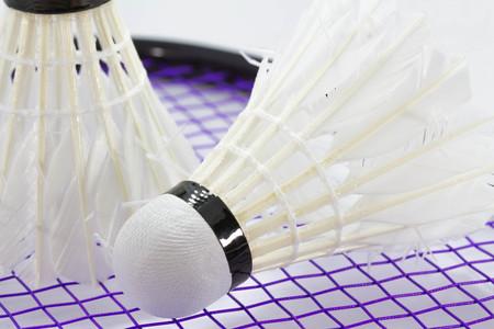shuttlecock: White Shuttlecock for badminton