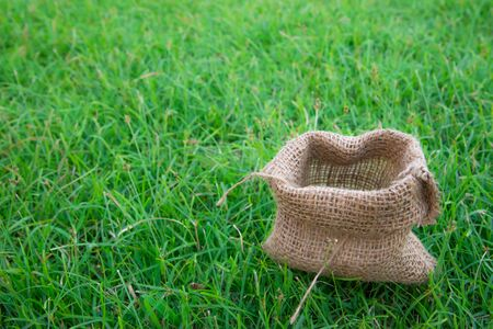 ruck sack: Cloth Bag in the green field