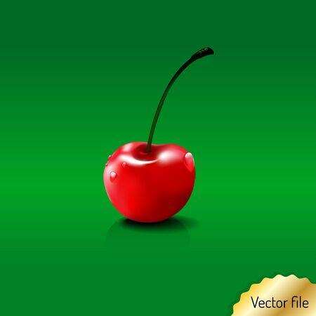 fruit stalk: cherry- fresh fruit & vegetables illustration. red color, vector file Illustration