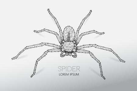 Abstract vector illustration of spider. line dot connection design. suitable use with Halloween concept. - line stroke weight editable