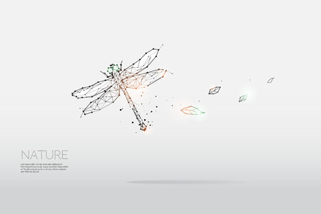 The particles, geometric art, line and dot of dragonfly.