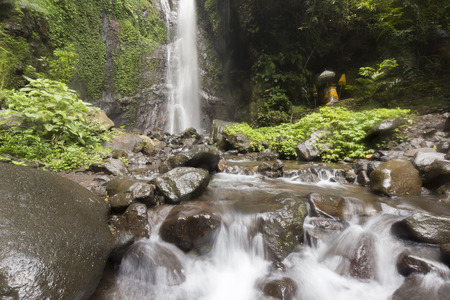 forest park: Waterfall in deep forest of Bali Stock Photo