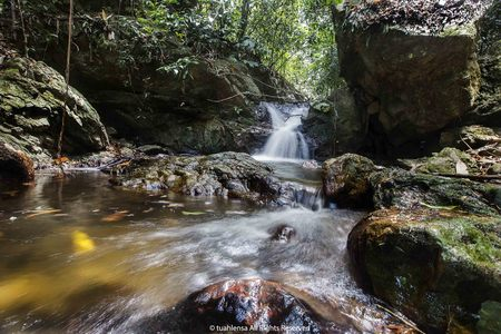 Royal Belum is 170 million years old primarily virgin tropical rainforest of the Royal Belum State Park in Perak, Malaysia. Reklamní fotografie - 61833190