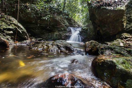 Royal Belum is 170 million years old primarily virgin tropical rainforest of the Royal Belum State Park in Perak, Malaysia.
