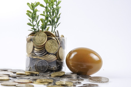 coins,golden egg and calculator for business conceptual.