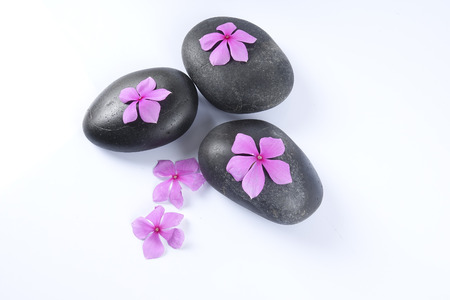 Zen stones and flowers. Beauty and spa conceptual.