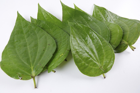 Betel leaf of Indian subcontinent