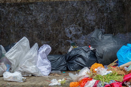 environmental issues: Poor rubbish disposal lead to environment polution.