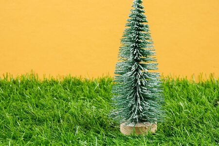 Christmas Festive celebration. Selective focus Stock Photo