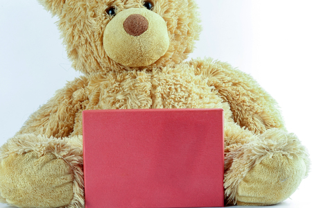 Teddy bear with red board on white. Copy space. Standard-Bild