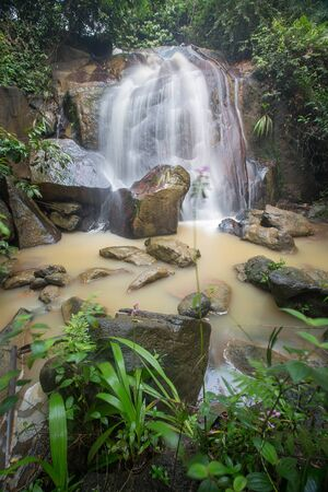 Waterfall/stream in a deep rain forest. Reklamní fotografie - 148815040