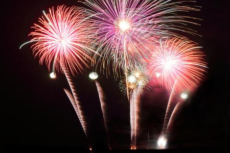 Festive colorful fireworks on night sky background. Celebratory holiday