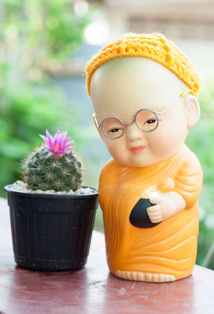 close up of monk doll and cactus photo