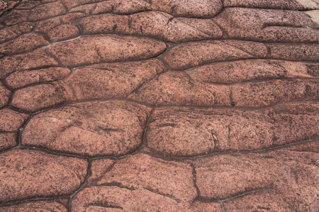 occurs: rocky button bedrock occurs naturally in Phu hin rong kra  national park,Phitsanulok province,Thailand,defocused