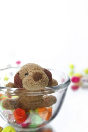 Close to the teddy bear and star on white background Stock Photo