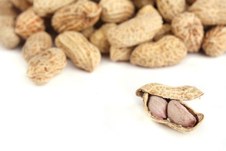 Focus on one peanut in white background