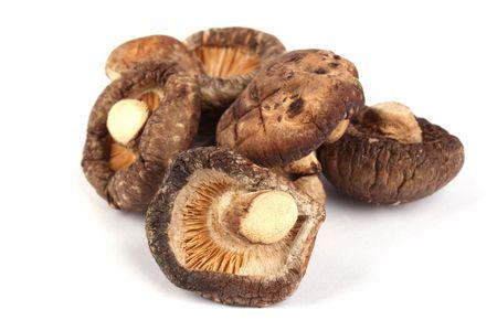 Close up dried mushroom isolated on white background