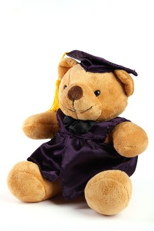 Side view Mortar Board Teddy Bear on white background Stock Photo