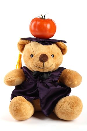 Mortar Board Teddy Bear with tomato on white background Stock Photo