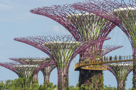 reclaimed: SINGAPORE - FEBUARY 4, 2015 : Gardens By The Bay in Singapore. Gardens By The Bay is a park spanning 101 hectares of reclaimed land in central Singapore, adjacent to the Marina Reservoir