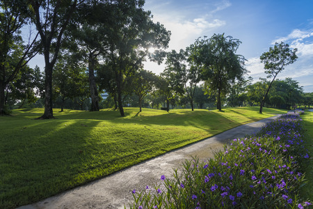 golf course: Golf course with flower Stock Photo