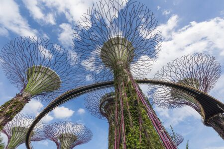 hectares: SINGAPORE - FEBUARY 4, 2015 : Gardens By The Bay in Singapore. Gardens By The Bay is a park spanning 101 hectares of reclaimed land in central Singapore, adjacent to the Marina Reservoir