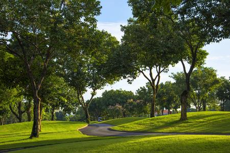 golf course: golf course