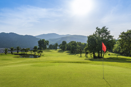 golf green: golf course with sunny day
