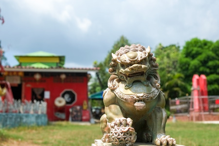 phuket province: The lion statue at local chinese shrine in phuket province, Thailand