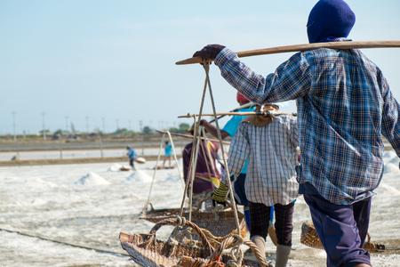 journeyman: Salt worker carrying salt at saline, salt field.