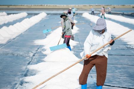 Phetchaburi, Thailand- March 11,2015: Unidentified workers gathering salt on the salines.