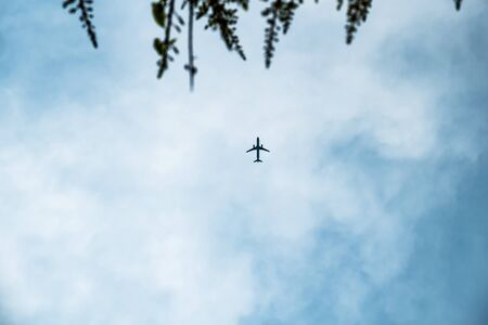 ray trace: Passenger airplane in the clouds with blurred tree in foreground.