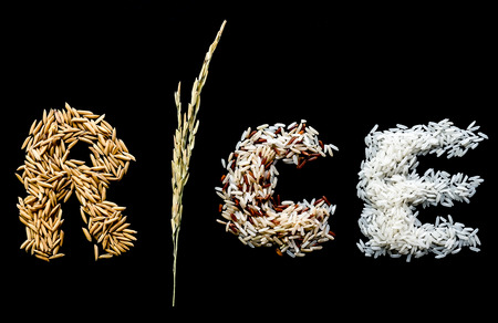 Alphabet letter from rice plant, paddy seed, brown rice, white (jasmine) rice. Dark background.