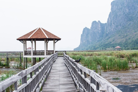Wood Bridge at Sam-Roy-Yod Nation park ,Prachuapkhirikhan Province,South of Thailand