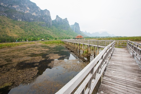Wood Bridge at Sam-Roy-Yod Nation park ,Prachuapkhirikhan Province,South of Thailand Stock Photo - 19052840