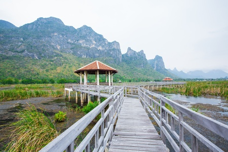 Wood Bridge at Sam-Roy-Yod Nation park ,Prachuapkhirikhan Province,South of Thailand photo