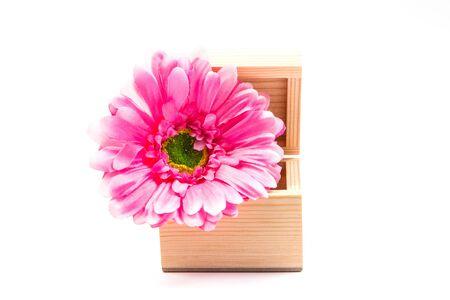 unwrapped: Box Flowers express feelings.