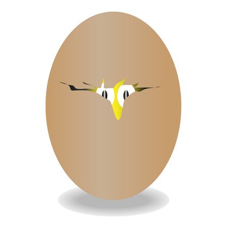 brown egg isolated on white     illustration  Vector