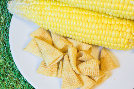 products food: crisp corn,processed products food.