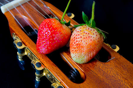 Strawberry sweet red on guitar black background. Stock Photo
