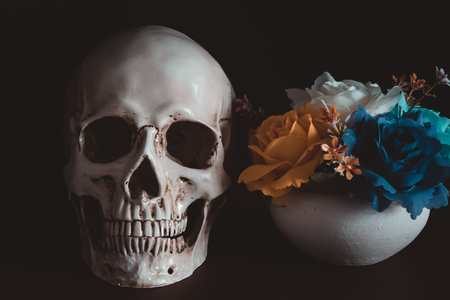 Human skull beside flower vase on wooden floor in Halloween day on black background. Stock Photo