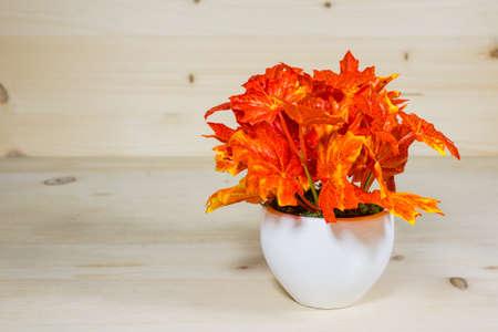 Beautiful maple vase on a wood background Stock Photo