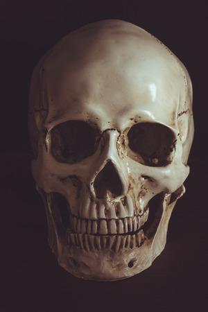 Human skull in darkness on black background