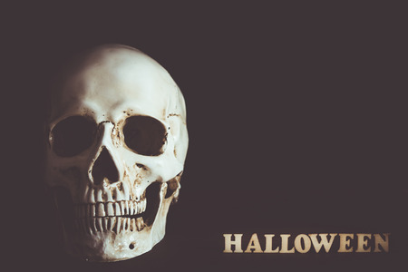 Human skull with empty space in Halloween day on black background.