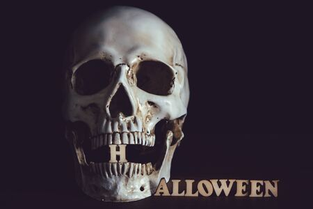Human skull and wooden alphabet Halloween on wooden floor in halloween day on black background Stock Photo