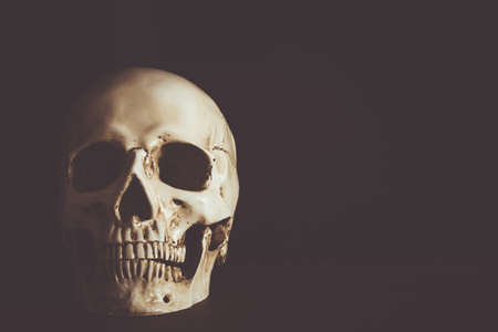 Human skull with empty space on black background.