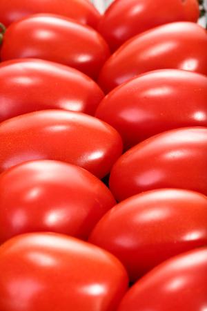 cherry tomatoes: Cherry tomatoes close up view