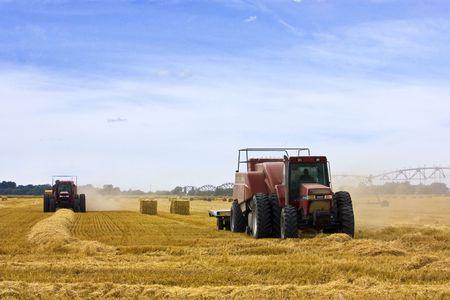 farm worker baling straw in field